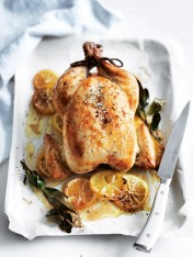 brined roast chicken
