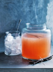 grapefruit vodka punch