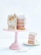 bombe alaska cake