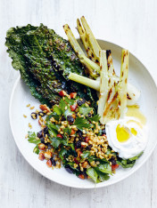 char-grilled fennel, freekeh and labne salad