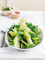 chervil-pickled cucumber, lettuce and mint salad