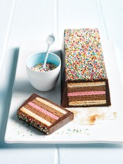 Chocolate wafer log