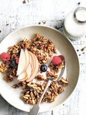 cinnamon-spiced granola shards