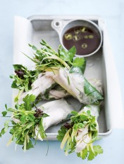 chicken and coconut rice paper rolls