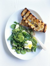 crushed broad bean, feta and mint dip