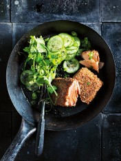 dukkah-crusted salmon with cucumber and chilli salad