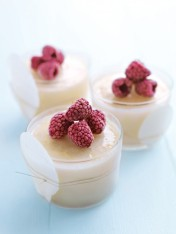 lemon sherbet with raspberries