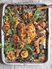 lemon and olive roasted chicken
