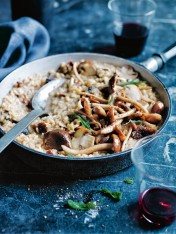 mixed mushroom and almond milk risotto with crispy sage