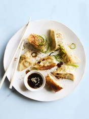 pork, ginger and water chestnut pot stickers