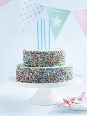 two-tiered coconut and sprinkle cake